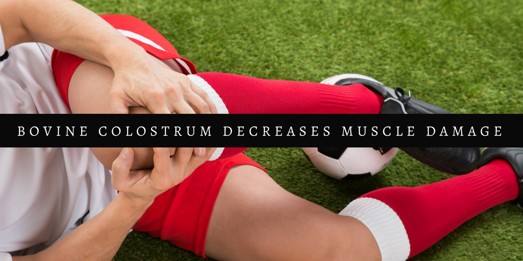 Bovine Colostrum Decreases Muscle Damage