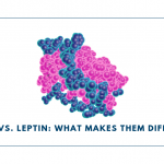 Lectin vs. Leptin: What Makes Them Different?