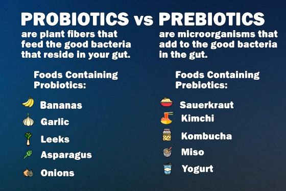 Probiotics vs Prebiotics: What's the Difference?