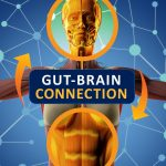 Your Gut and Brain Connection May Govern How You Feel